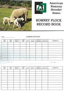 American Romney Record Book